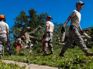 U.S. Air Force civil engineers with the 628th Civil Engineer Squadron, remove a fallen tree after Hurricane Mathew swept through Hunley Park-Air Base housing, S.C., Oct. 9, 2016. All non-essential personnel evacuated the area, but returned after disaster response coordinators assessed damage and verified a safe operating environment. Sean Carnes/U.S. Air Force photo