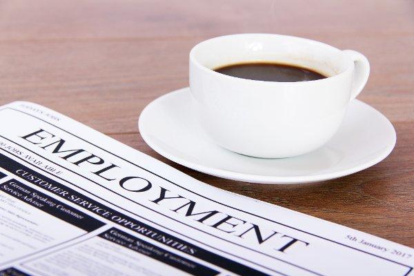 job-search-1800-28-mar-2017-ts600