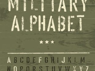 Military civilian language